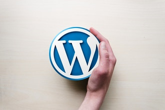 WordPress Level 2